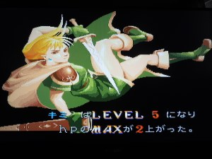 Your character will level-up after every level, increasing your total HP life bar.