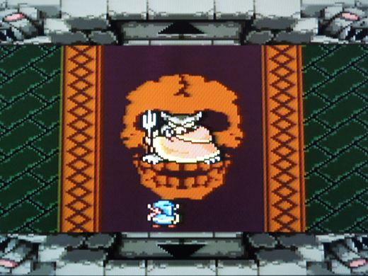 After finding 8 pieces of the Triforce, you'll fight Ganon and attempt to rescue Princess Zelda.
