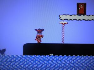 Sister carries a magic lamp in Doki Doki Panic.  Sister became Princess Peach and the lamp a potion in Super Mario Bros. 2.